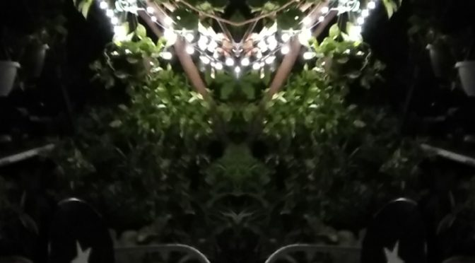 My Solar Light Garden